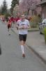 Lauf-AG beim Sälzerlauf 2014